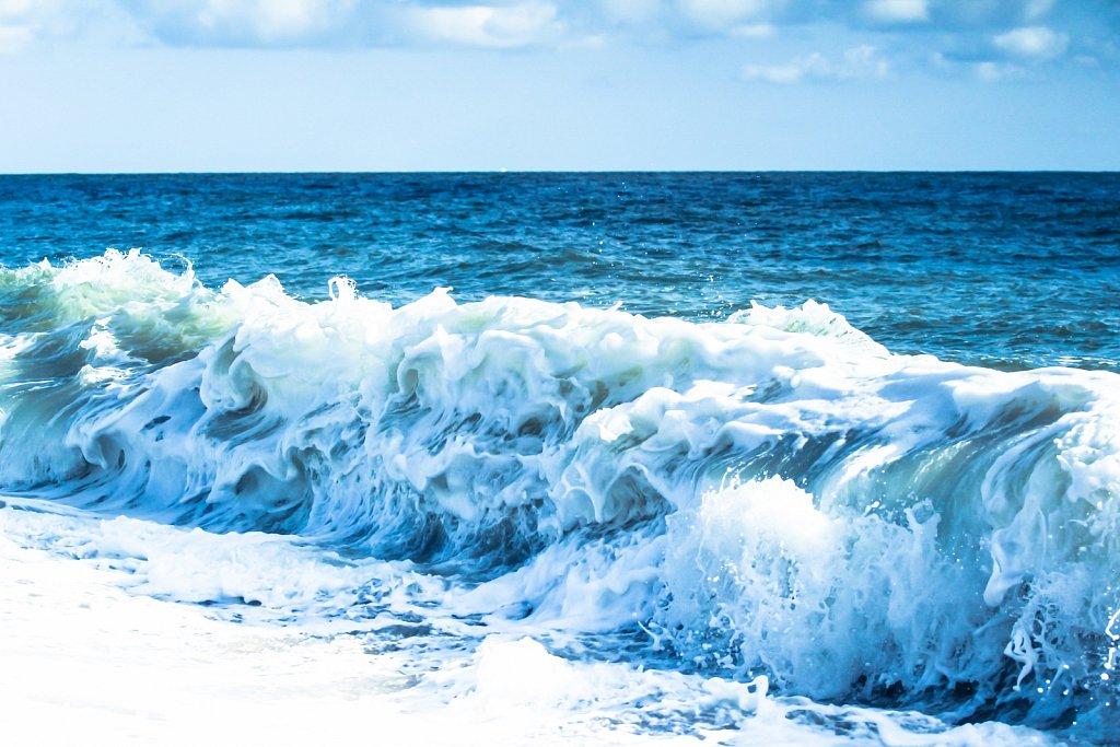 Ocean of Gratitude